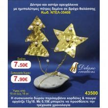 ΣΕ ΒΡΑΧΟ ΘΑΛΑΣΣΗΣ ΓΟΥΡΙΑ by DELANO collections 2020